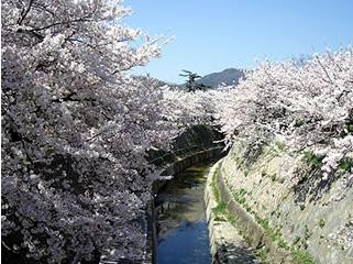 妙法寺川公園